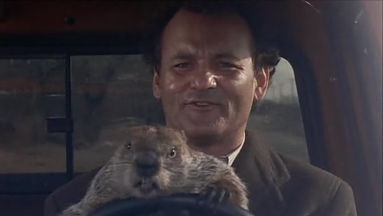 Groundhog-day-trading
